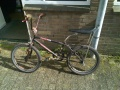 Bmx-newseat.jpg